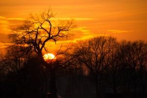 African sunset in Belfeld